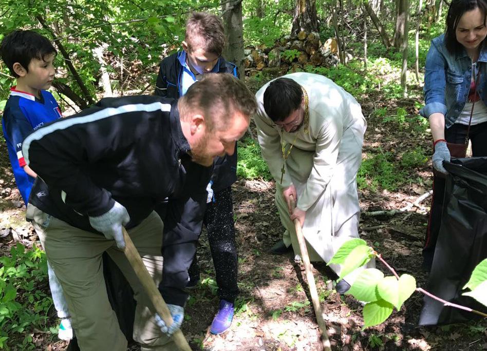 Акция «Чистый лес» в Вешках